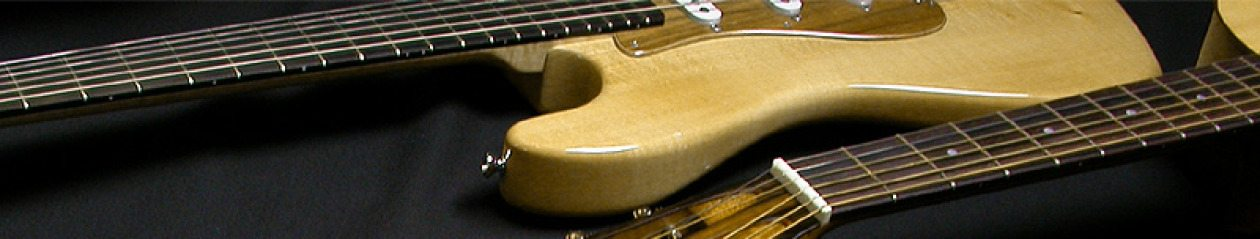 The Blues Guitarist